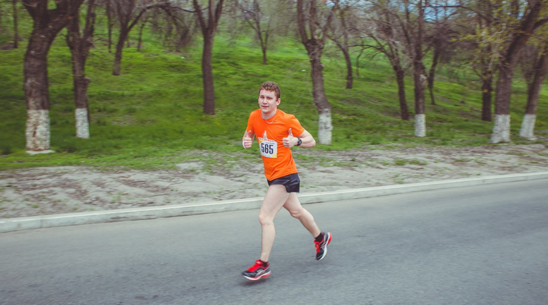 Как выглядит бегония и фуксия фото прикольная флеш-игра